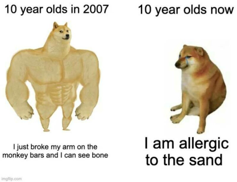 Big strong doge that represents the 10 year olds in 2007, VS a fat doge that represents the kids now.