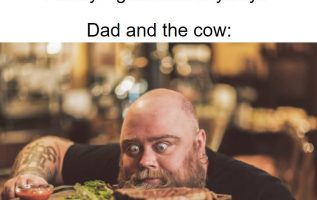 dad and cow