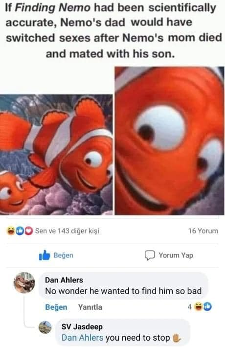 Picture of finding nemo and the dad.