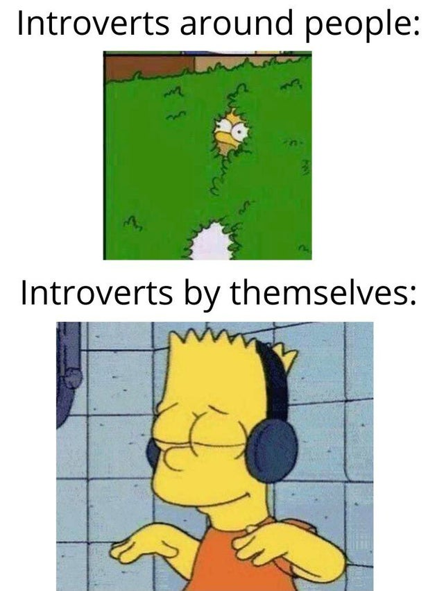 Simpson meme, introverts around people and introverts by themselves.