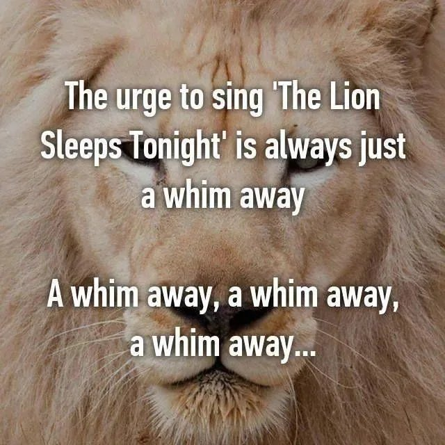 The Lion king is just a whim away, a whim away, a whim away...