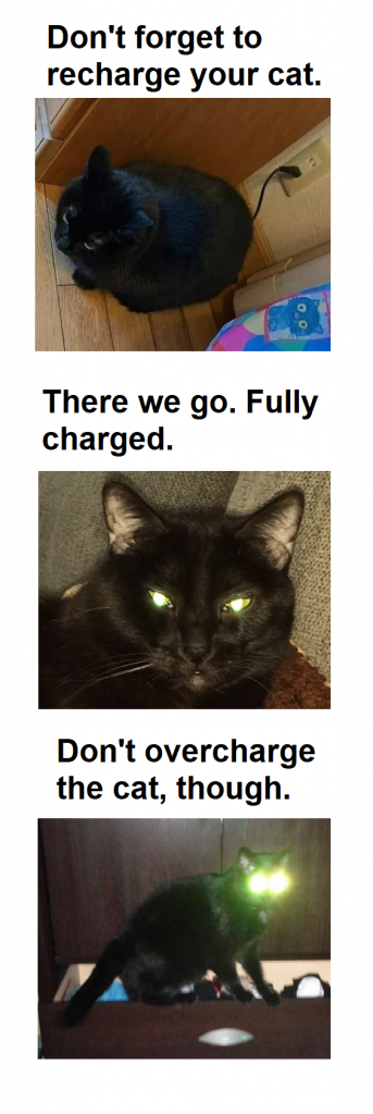 First part has a cat with a charger in the electrciity outlet. Beneath a cat with glowing eyes, beneath the cats eyes shine like car lights.