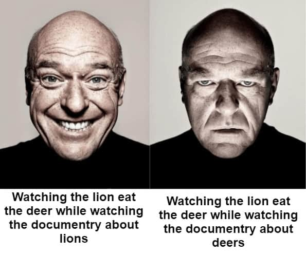 Watching the lion eat the deer while watching the documentary about lions. Watching the lion eat the deer while watching the documentary about deers.