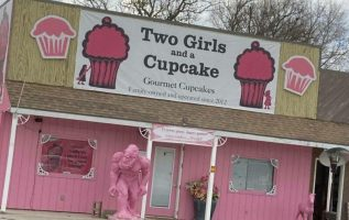two girls and a cupcake