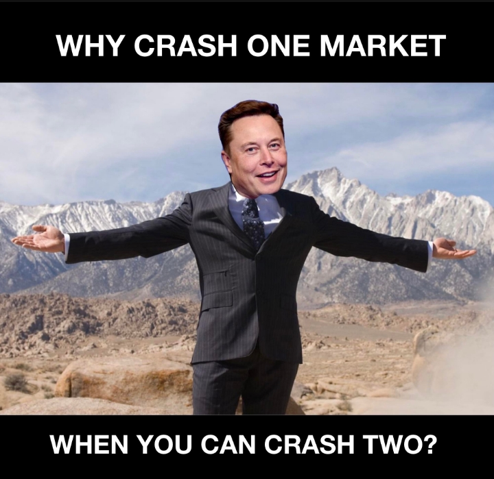 Elon Musk: Why crash one market, when you can crash two?