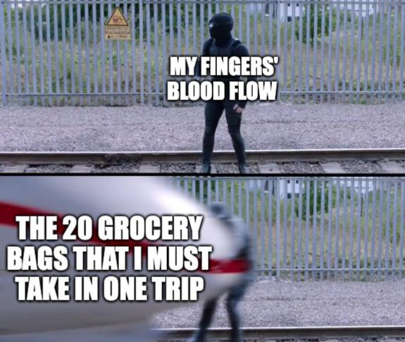 My fingers blood flow. The 20 grocery bags that I must take in one trip.