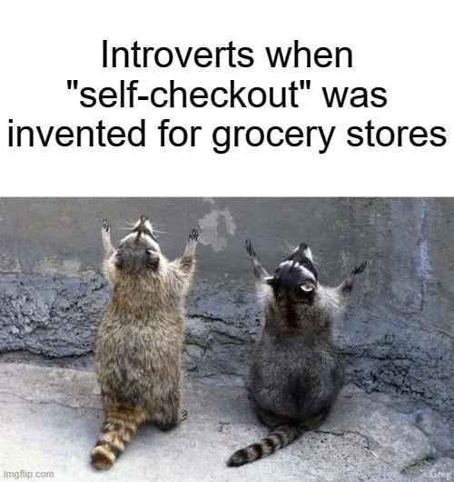 Introverts when self-checkout was invented for grocery stores.