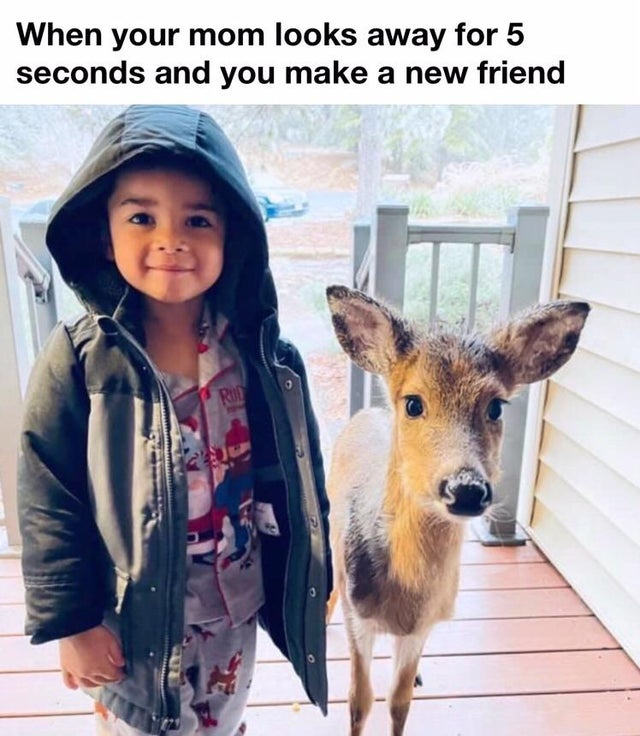 When your mom looks away for 5 seconds and you make a new friend.