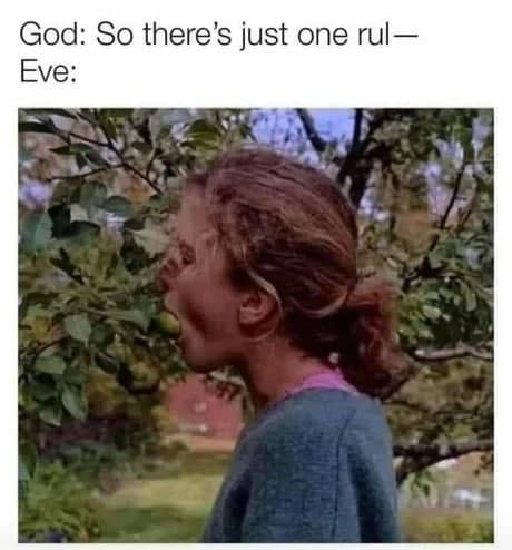 God: So there is just one rule. Eve bites the apple.